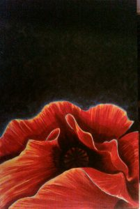 acrylic on canvas - Poppy for Mary-Ellen - Stephany Castilla